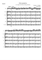 Moto perpetuo for flute and string orchestra – score